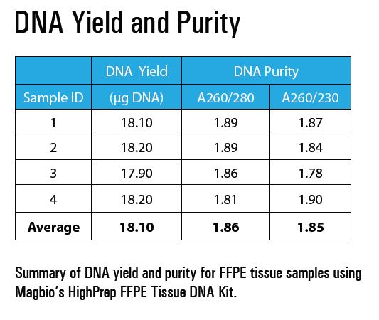 High yields of pure gDNA extracted with HighPrep™ FFPE Tissue DNA Kit